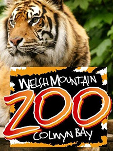 welsh mountain zoo colwyn bay north wales, near castlebank hotel conwy